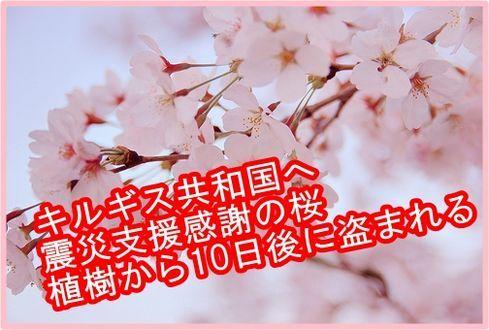 桜ver.jpg